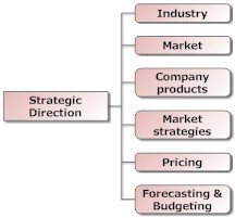 Marketing Strategy - Strategic Market Direction
